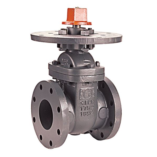 F 609 Gate Valve Cast Iron Fire Protection Flanged
