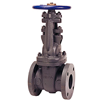 Gate Valve - Class 125, Nickel Iron, Stainless Steel Trim, Flanged, F-617-13