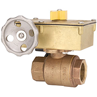 Two-Piece Bronze Ball Valve - Fire Protection, Threaded Ends, KT-505-W-8