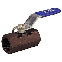 One-Piece Carbon Steel Ball Valve - Reduced Port, Stainless Steel Trim, T-570-CS-R-66