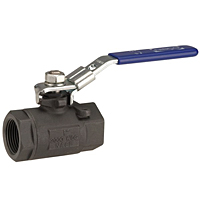 Two-Piece Carbon Steel Ball Valve - Conventional Port, Stainless Steel Trim, TC-580-CS-R-66-LL