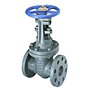 Gate Valve - Class 250, Cast Iron, Outside Screw and Yoke, Flanged, F-667-O