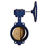 Butterfly Valve - Cast Iron, International, Wafer, Bronze Disc, N200145