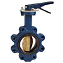 Butterfly Valve - Cast Iron, International, Electroplated Ductile Iron Disc, N200236