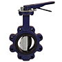Butterfly Valve - Cast Iron, International, Electroplated Disc, N200246
