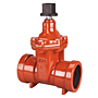 Gate Valve - Cast Iron, Irrigation, PVC End Connections, P-619-RW