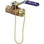 Two-Piece Bronze Ball Valve - Stainless Steel Trim, Hose Connection, T-585-70-66-HC