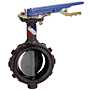 Butterfly Valve - Ductile Iron, Wafer Type, 285 PSI, WD-5022