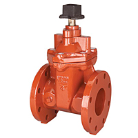 Gate Valve with Square Operating Nut,, F-619-RW-SON