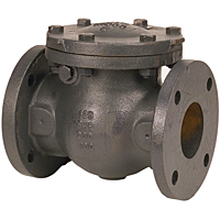 Check Valve - Cast Iron, Swing, Iron Trim, F-918-N