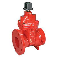 Gate Valve - Ductile Iron, Irrigation, Flanged, FPCR-619-RW