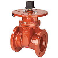 Gate Valve - Ductile Iron, Fire Protection, Mechanical Joint, M-609-RWS