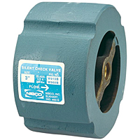 Check Valve -Class 250, Iron Body, Stainless Steel Trim, W-960-SS