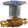 Ball Valve - Bronze, 250 PSI, Stainless Steel Trim, PC585-70-66
