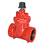 Gate Valve - Ductile Iron, Irrigation, PVC Ends, PCR-619-RW