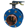 Butterfly Valve - Ductile Iron, Press x Press Female Ends, 250 PSI, PFD3022