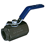 Two-Piece Carbon Steel Ball Valve - Conventional Port, Stainless Steel Trim, T-580-CS-R-66